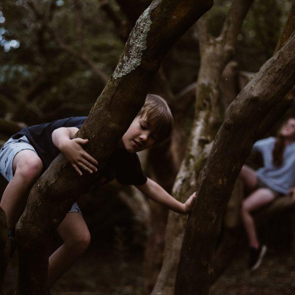 bosco-magico